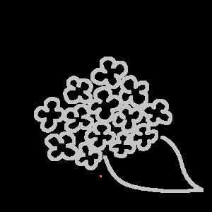 紫陽花のボールペンイラストのかわいい書き方