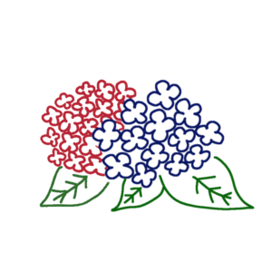 紫陽花のボールペンイラスト