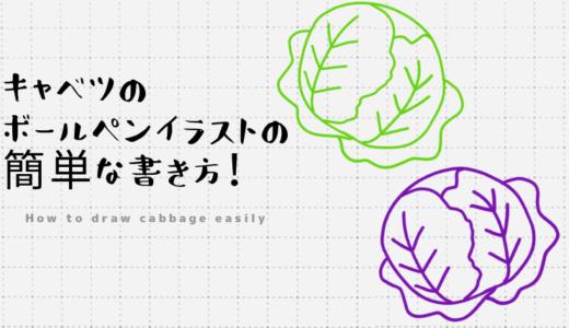 キャベツのボールペンイラストの簡単な書き方!