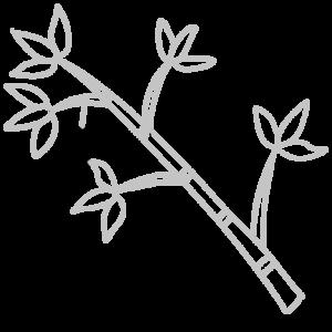 七夕の笹飾りのボールペンイラストのかわいい書き方
